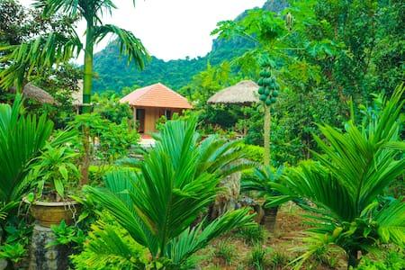 Catba Jungle Farm Stay