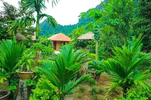 Catba Jungle Farm Stay