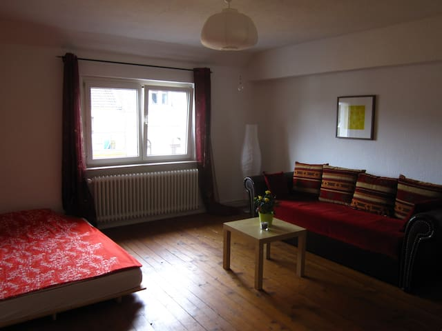 Nice room in shared apartment - Wiesbaden