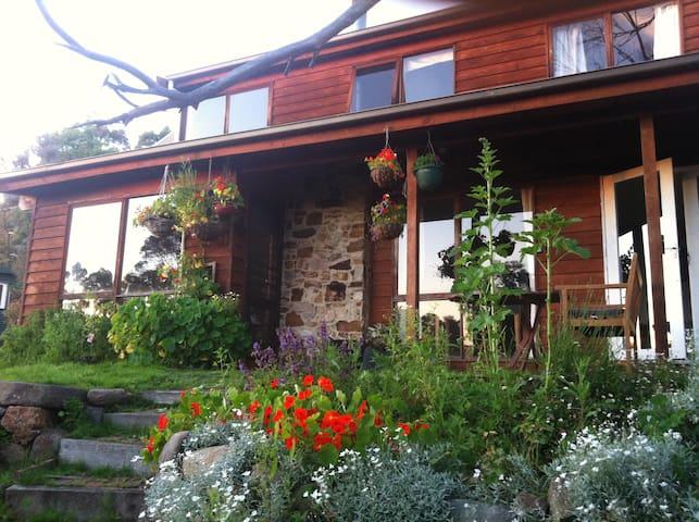 Room in bush home - Fern Tree - Talo