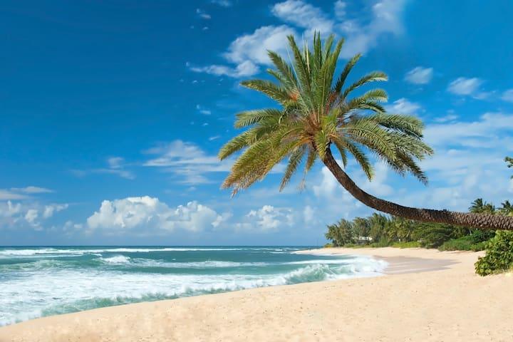 OCEANFRONT Luxury Condo *180° SWEEPING Ocean Views