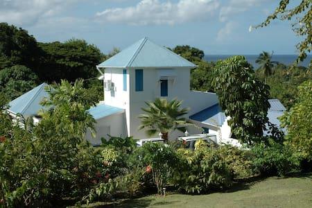 Eternity Villa, Mount Irvine, Tobago - Buccoo - 别墅