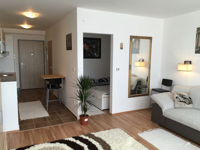 New,Allergy-Free Eco Apartment - Budapest - Lägenhet
