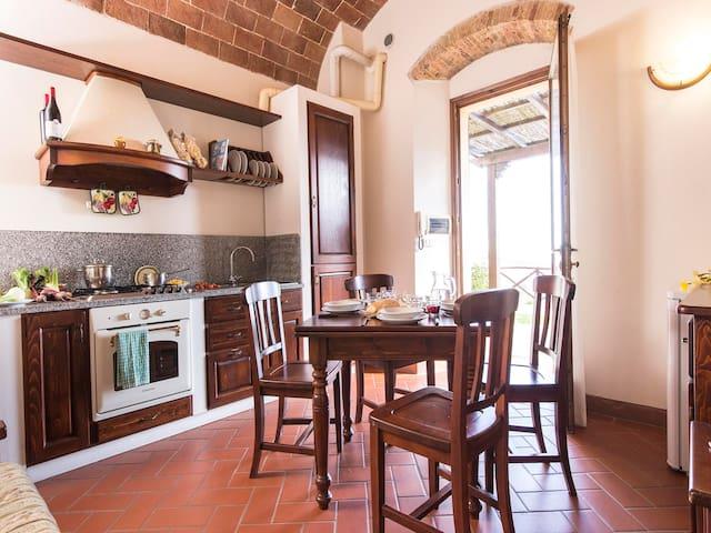 Scintilla - Distinctive 1bdr in Maremma region - Roccatederighi - Lägenhet