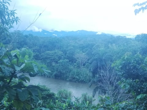 Disfruta la selva, sin estar lejos de la ciudad.