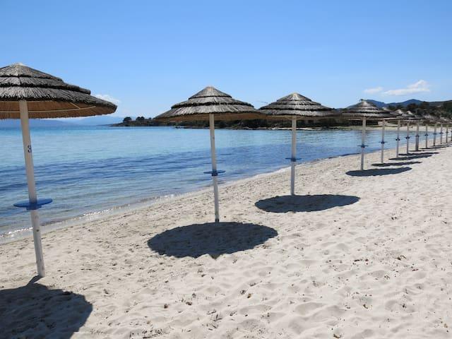 Appartamento Golfo Aranci sulla spiaggia - Golfo Aranci - Lejlighed