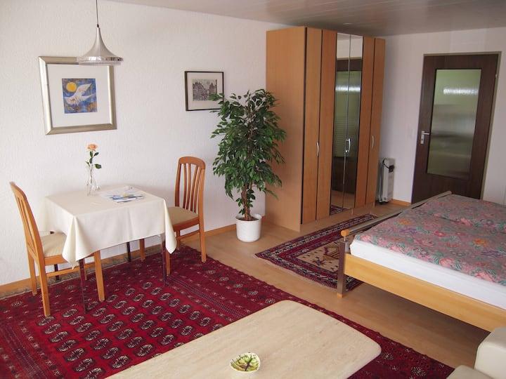 1 Zi-Wohnung Appartement Alpenblick, Weggis