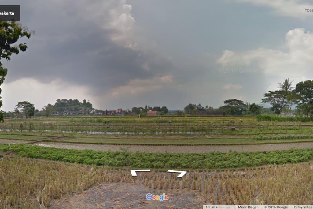 View Sawah Piyungan