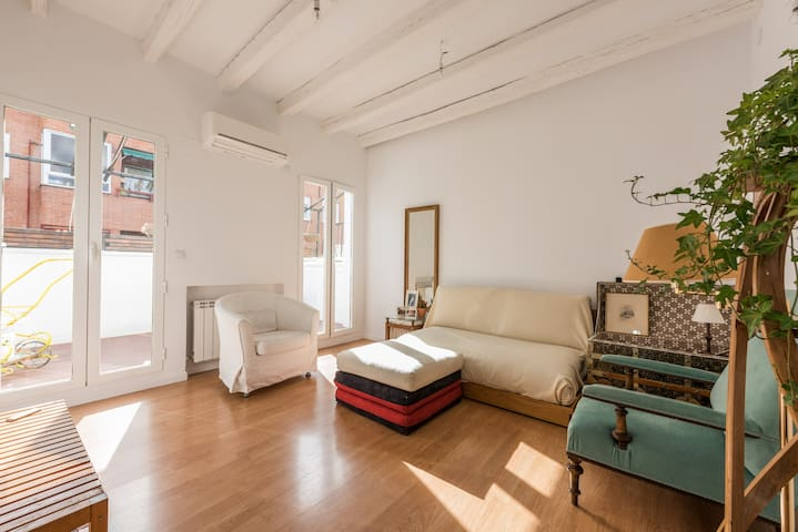 ATTIC with TERRACE