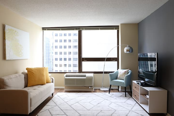 Trendy, Big and Central Studio in Chicago Loop
