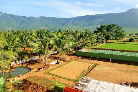 Bamboo Nest Farm Stay - Narasipuram - 別墅