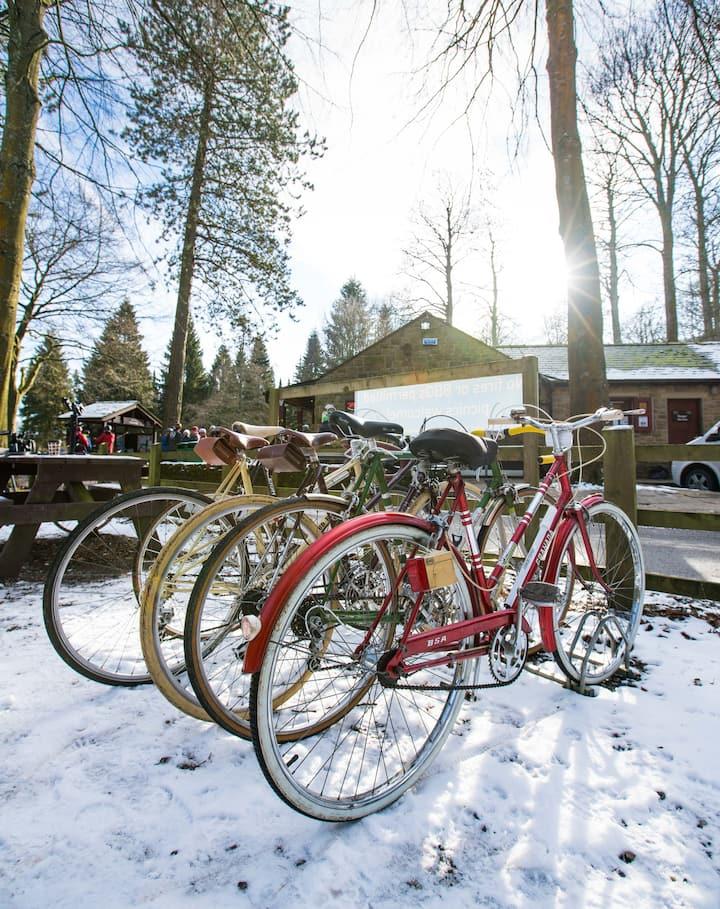 Beautiful vintage bikes