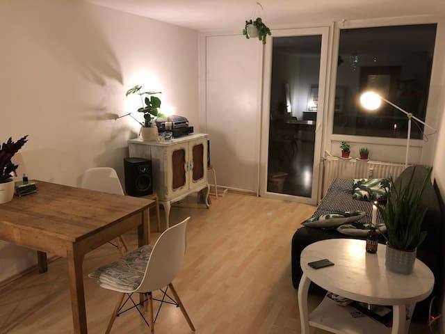 Charmantes Appartement Neu-Ehrenfeld