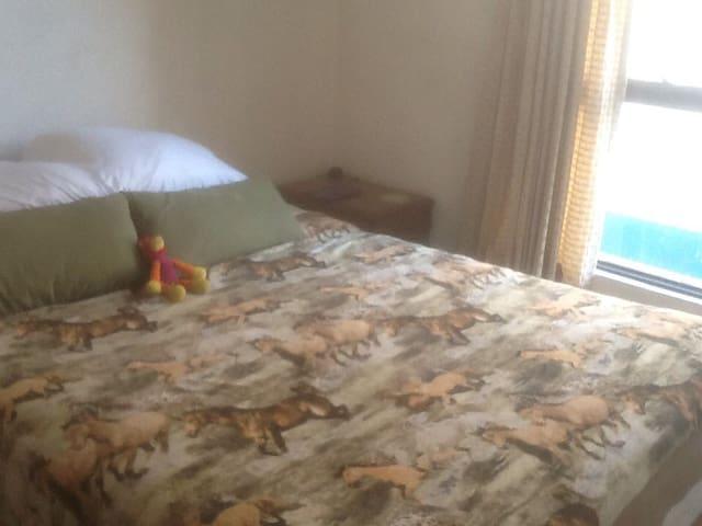 One room with a comfortable bed - Ciudad de México - Bed & Breakfast