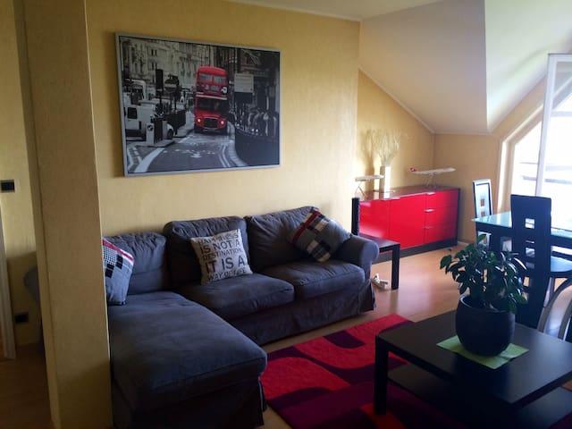 Private room in a lovely flat  - Divonne-les-Bains - Leilighet