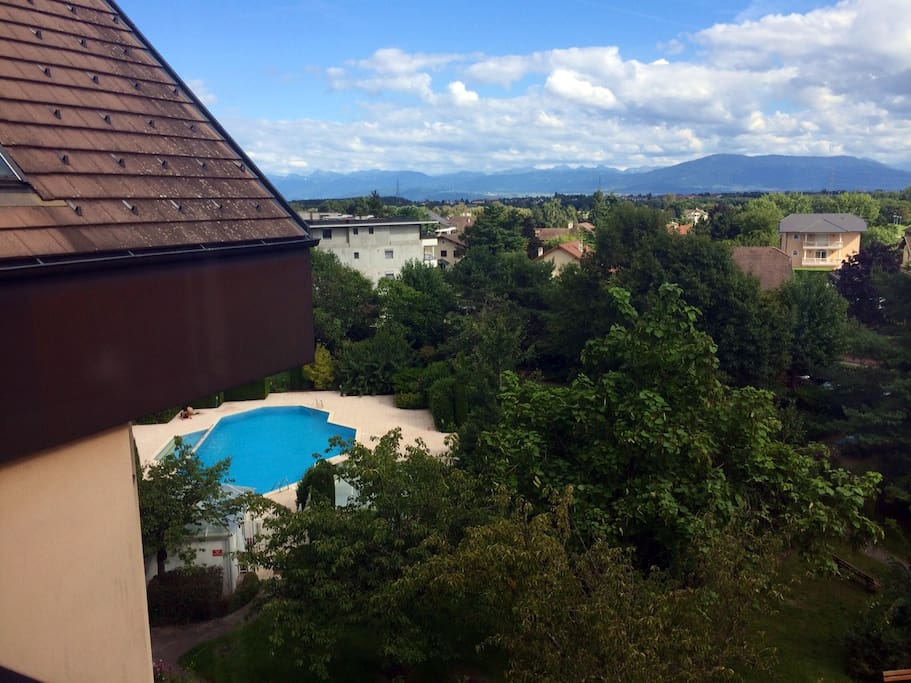 View from window and pool