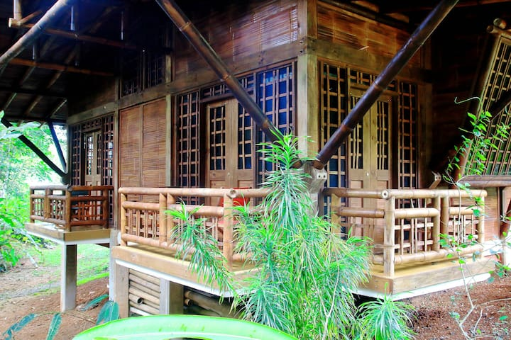 Waterfall-farm-forest-solar energy-bamboo-animals