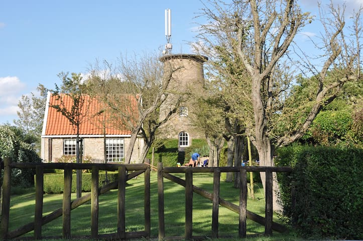 Charming house next to Dutch mill - Cadzand - Huis