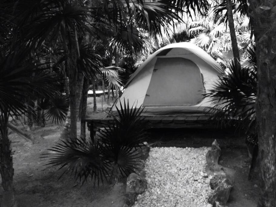 Turquesa Tulum Jungle Camping A