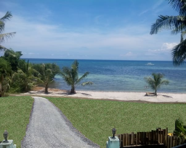 Beach House Near Alona + Scooters or Motorcycles - Bohol - House