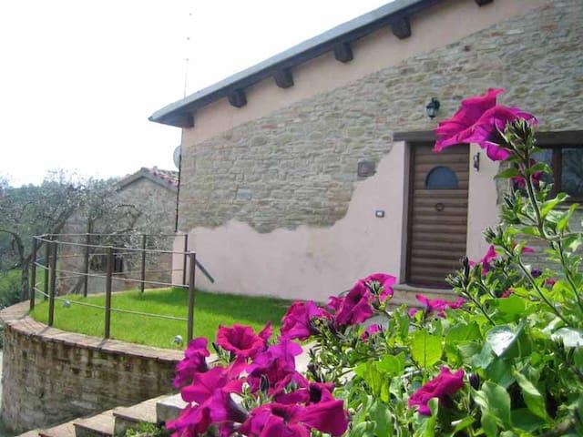 B&B Urbino la Valle - Castello di Cavallino