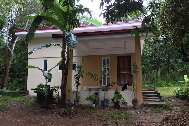 Entire place/ Sanicolas Guest house