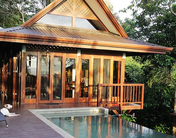 Ocean view villa in private jungle