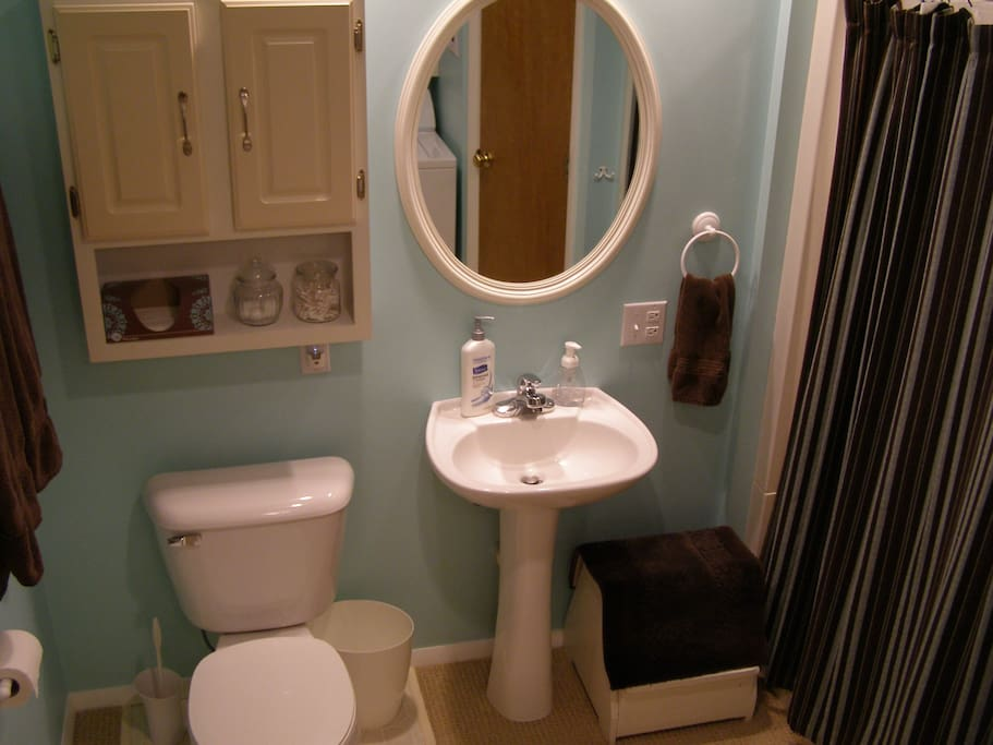 Shared Basement Bath with Laundry