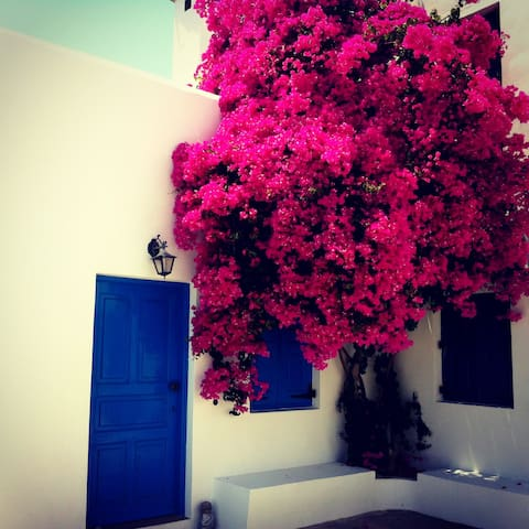 Lovely environment at House Salvia - Lachania - Talo