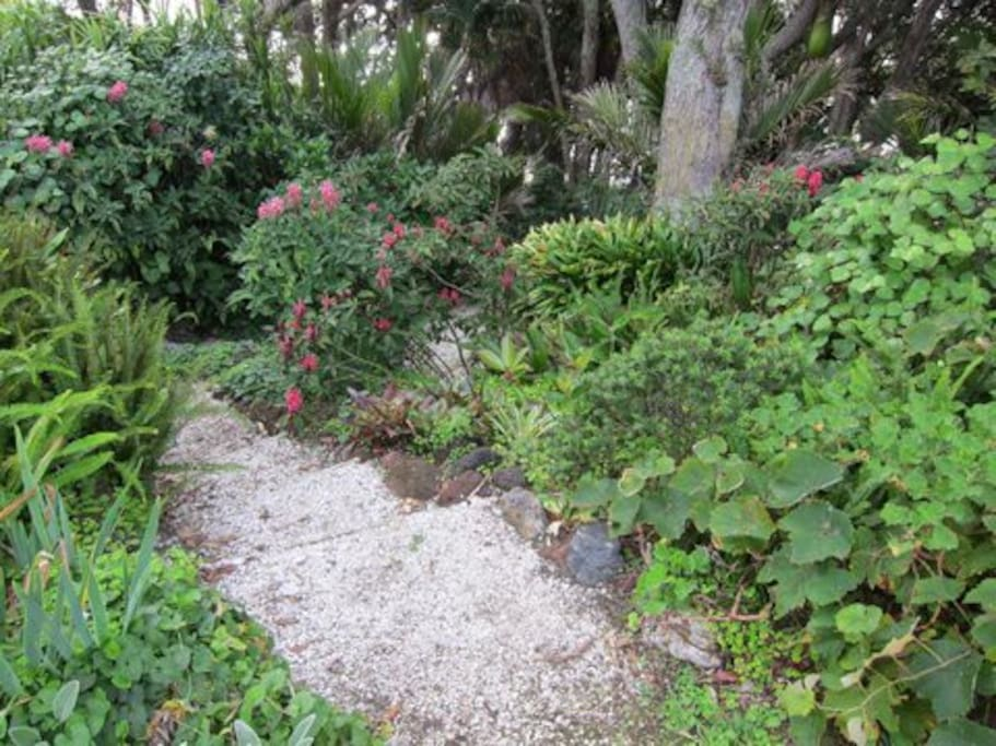 The garden path that leads to the Beach