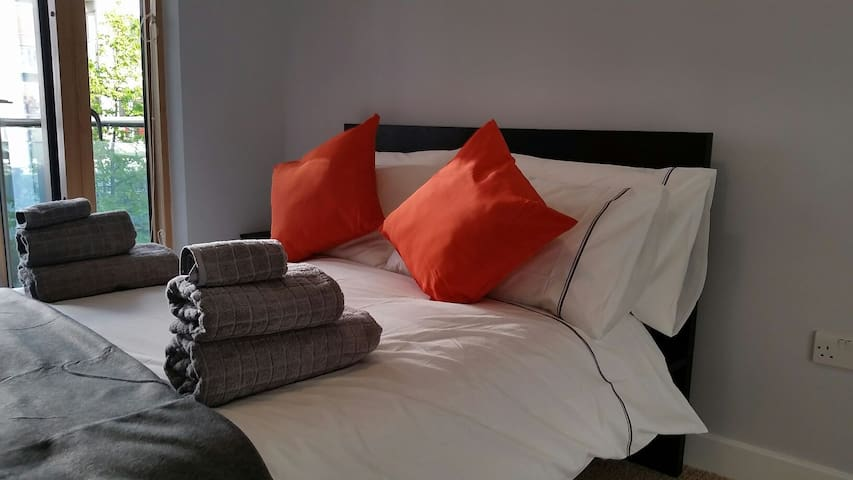 Luxury Apt in Grand Canal Dock