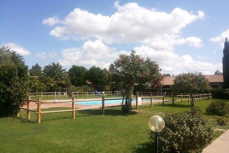 Tuscany: apt with pool - Marina di Grosseto