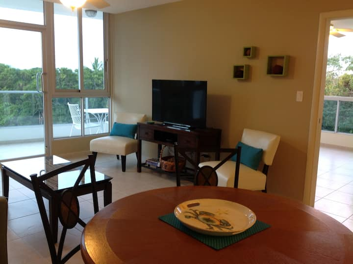 Great Value, Beautiful Apartment and BEACH FRONT!
