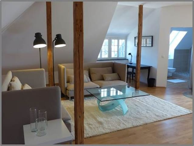 R8 Awesome Loft in Bonn townhouse
