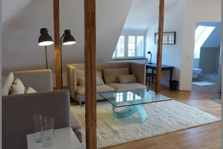 Awesome Loft in Bonn townhouse - Bonn - Villa