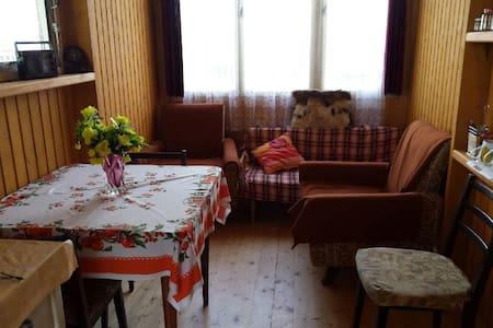 Malá chatka na Vysočině( jen léto) - Brtnice - Skjul