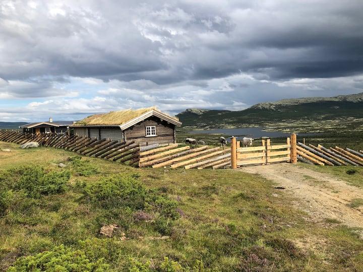 Kjøllsetra Oldcabin