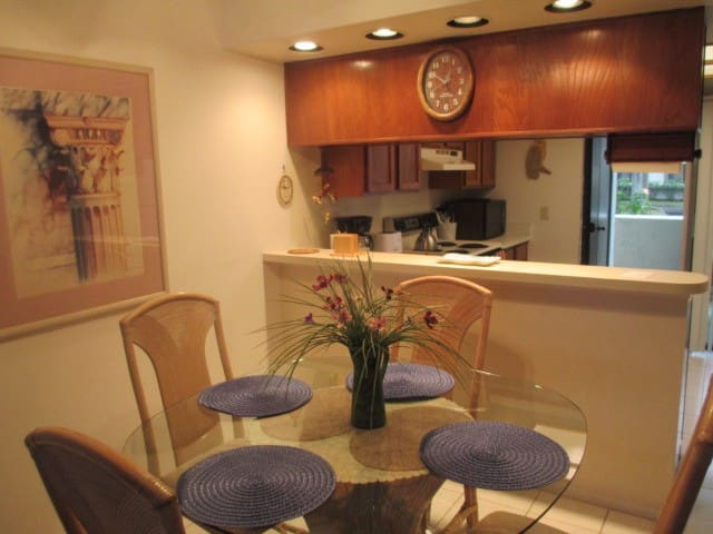 Ground floor lake front 2 br 2 bth  - Oldsmar - Condominio