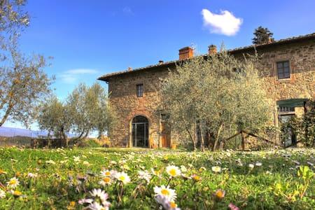Agriturismo Casavecchia, il Glicine - Figline Valdarno - Apartament