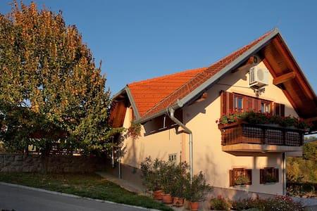 County house Jakljevič app2 - Grabrovec