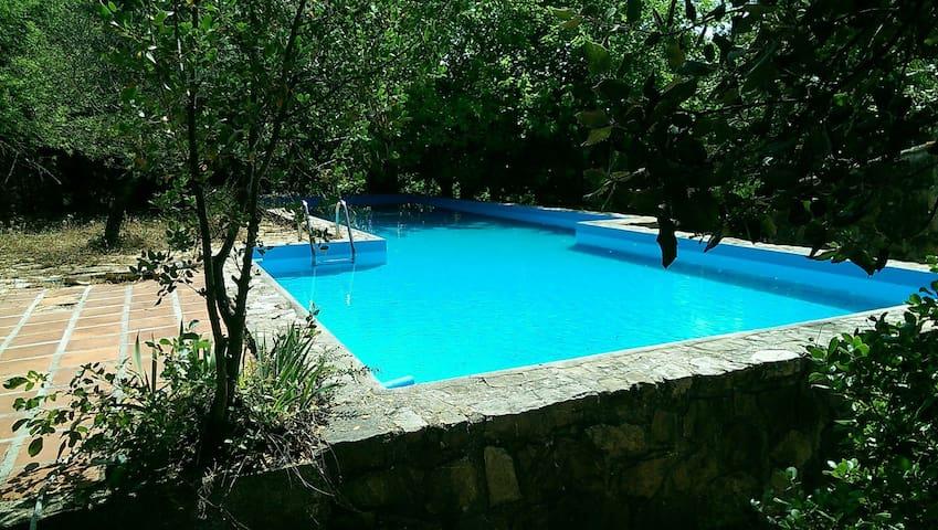 Casa Rural en plena Naturaleza - Alfarnate - Huis