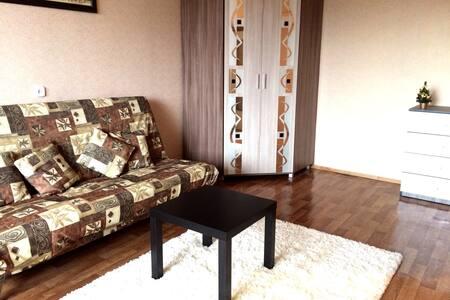 Уютная однокомнатная квартира - Minsk - Pis