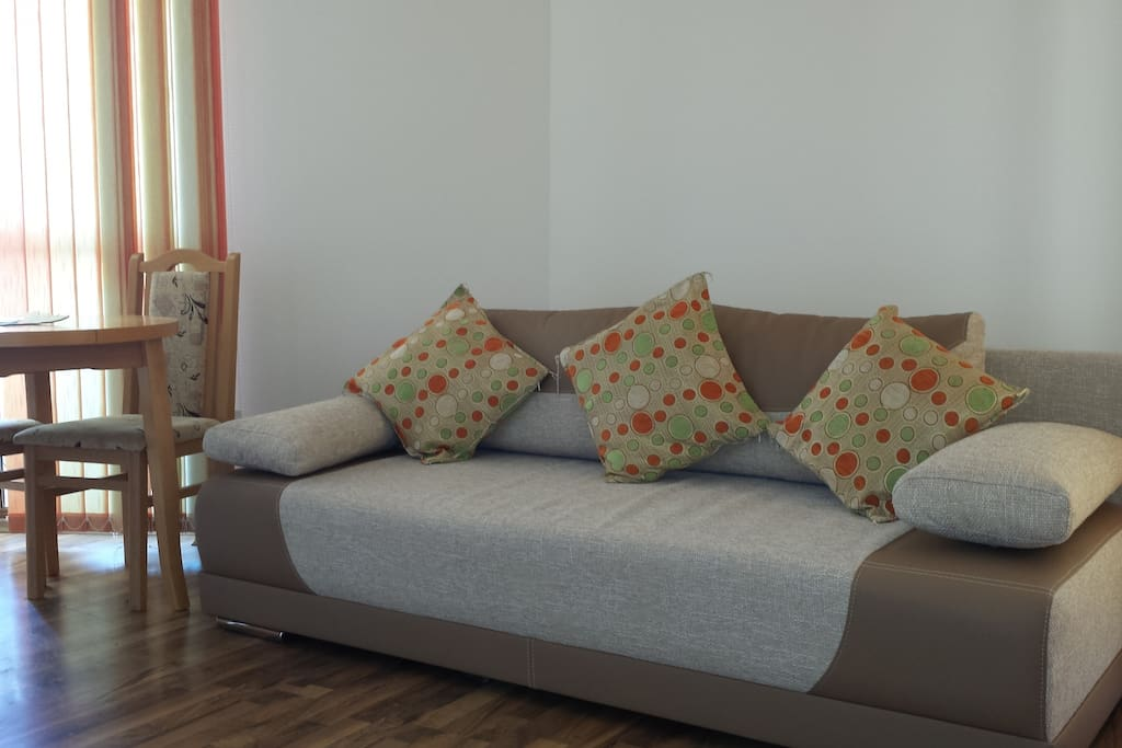 The spacious living area has a sofa bed