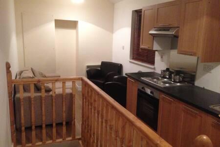 Fantastic 1 Bedroom City Apt No 4 - Dublin - Apartment