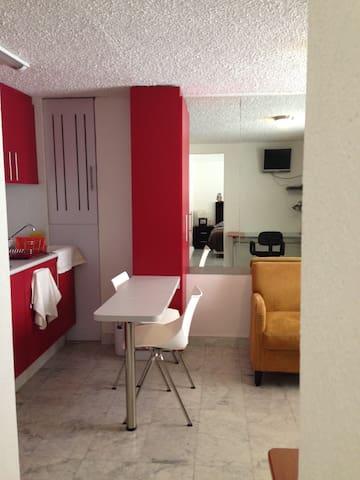 ONE ROOM LOFT AT LOMAS DE CHAPULTEPEC - Mexico City - Appartement