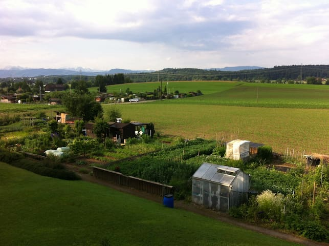 Not far from Zurich - Gossau - Apartment
