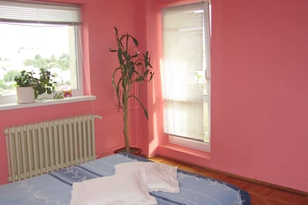 Room with private bathroom, view. - Tulcea