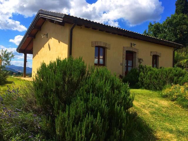Casa Borgia