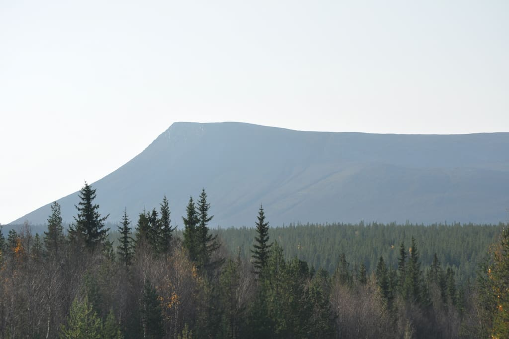 This beautiful mountain is Sonfjället, a nationalpark. Its 30 min drive and 2-3 hours walk up to the top!