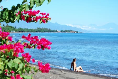 Spectacular Beach Villa, North Bali - Seririt